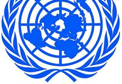التجمع القبطى الدولى يهنئ المصريين على المقعد غير دائم بالامم المتحدة
