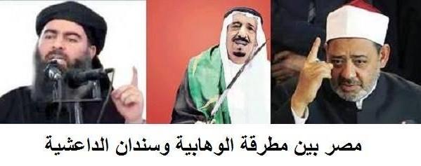 أشرف حلمي يكتب: مصر بين مطرقة الوهابية وسندان الداعشية