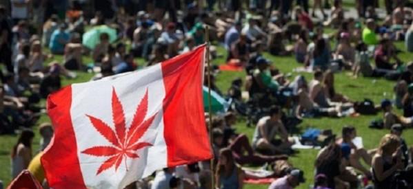 حكومة كندا تُناقش شرعية حيازة الماريجوانا لإقراره في يوليو 2018