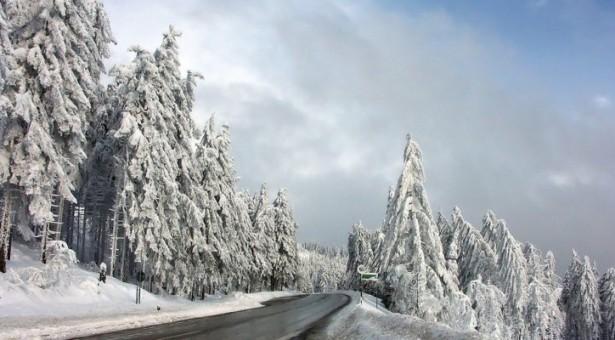 دراسة بجامعة البرتا تكشف سبب زيادة الوزن في فصل الشتاء